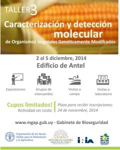 Taller 3 Caracterización y detección molecular